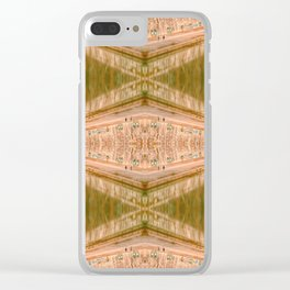 Mirror Rome I Clear iPhone Case