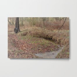 Tire Swing Metal Print