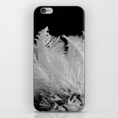like feathers iPhone & iPod Skin