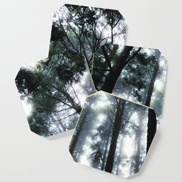 Among the Trees Coaster