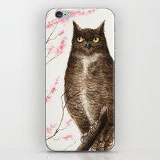 Spring Owl iPhone & iPod Skin