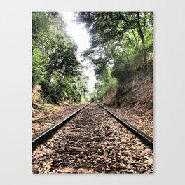 train tunnel Canvas Print