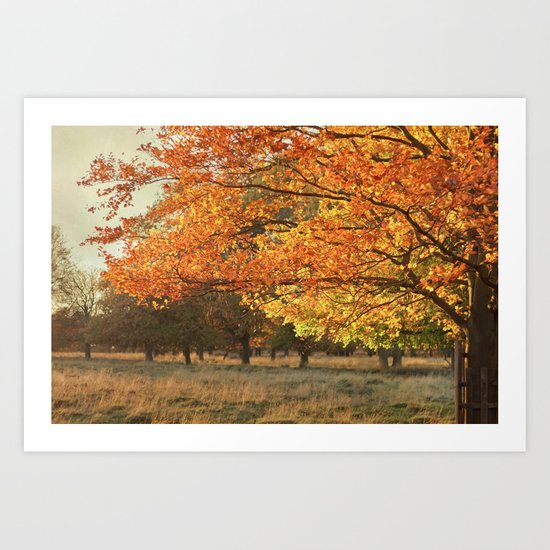 Autumn II Art Print