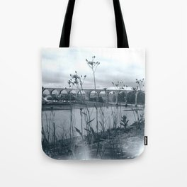 Flowers in the Wall, Berwick Tote Bag