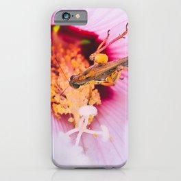 Grasshopper's Flower Snack. Photograph iPhone Case