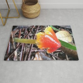 Red and Yellow Mushroom Rug