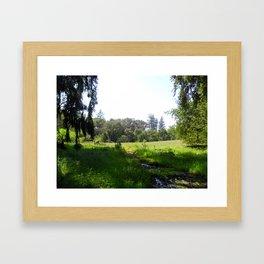 Salmon Creek Framed Art Print