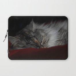 Sleeper Laptop Sleeve