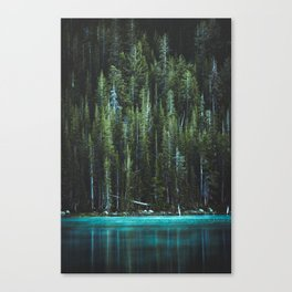 Nature Photo - Turquoise Blue Lake and Tall Pines Canvas Print