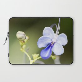 Blue Glory Bower from Bud to Bloom Laptop Sleeve