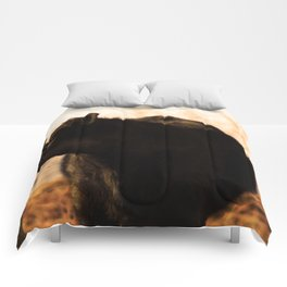Moo'n around Comforters