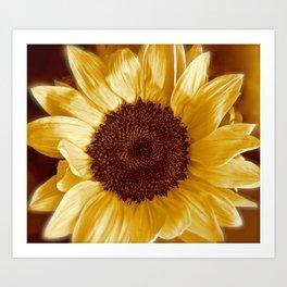 Sunflower Energy II Art Print