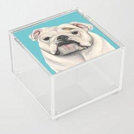 Sweet Little English Bulldog Acrylic Box