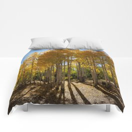 Autumn Blaze outside of Crested Butte, Colorado for #Society6 Comforters