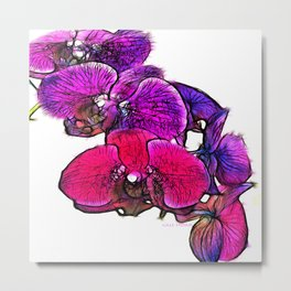 :: Orchids at Breakfast :: Metal Print