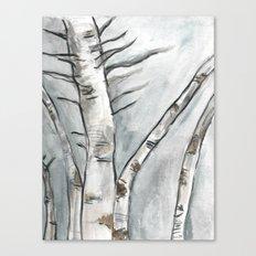 Birch Trees in Winter Canvas Print