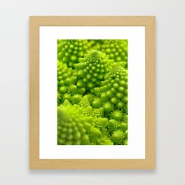 Macro Romanesco Broccoli Framed Art Print