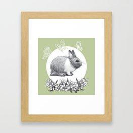 Rabbit fluffy gray on a green background Framed Art Print