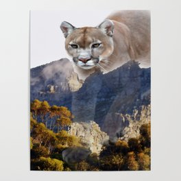 Mountain lion and mountains Poster