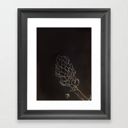 Black and White Alpinia purpurata – Red Ginger Flower, Bogota, Colombia Framed Art Print