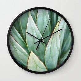 Abstract Agave Wall Clock