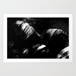 Pericardium 3 Art Print