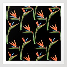 Bird of paradise flowers patten Art Print