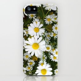 Daisys iPhone Case