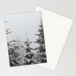 One Fine Winter Day - 68/365 Stationery Cards