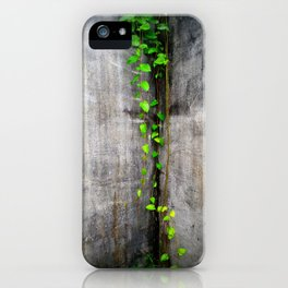 Green Climbing Vine, Bocas Del Toro iPhone Case