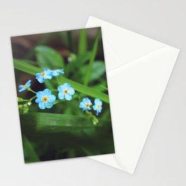 Mini Mints Stationery Cards