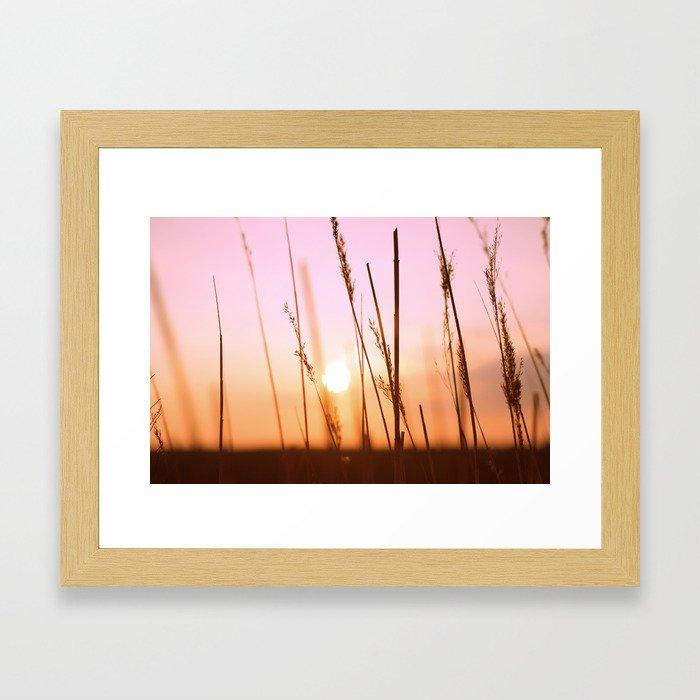 Straw Framed Art Print