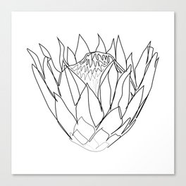 """Botanical Collection"" - Protea Flower Canvas Print"
