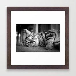 Cuteness Itself Framed Art Print