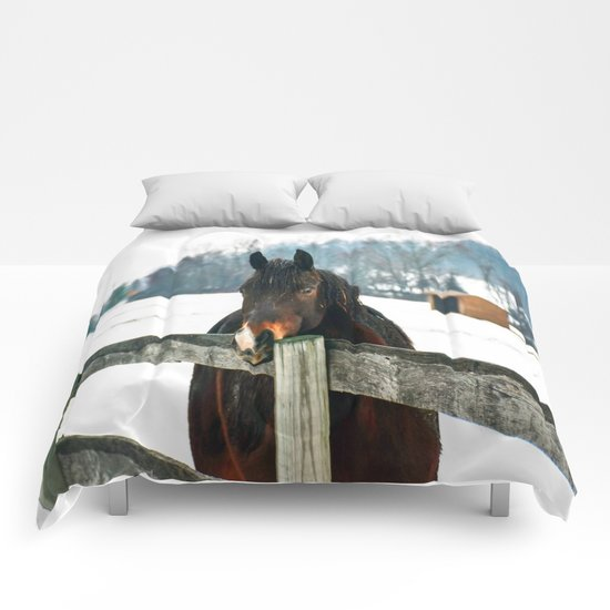 Thoughtful Horse Comforters