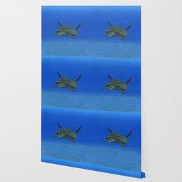 Peaceful Sea Turtle Wallpaper