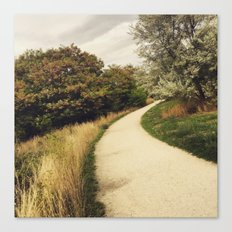 A Path in the Woods Canvas Print
