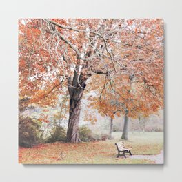 Autumn scenery #7 Metal Print