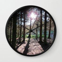Pine Trees and Low Scottish Morning Sunshine Wall Clock