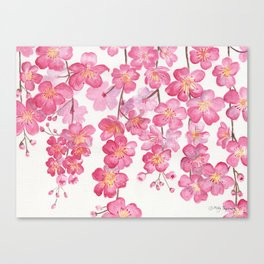 Weeping Cherry Blossom Canvas Print