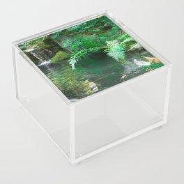 Koi pond in Japanese Zen Garden Acrylic Box