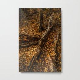Malibu Creek Trees Metal Print