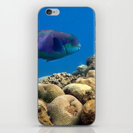The underwater life iPhone Skin