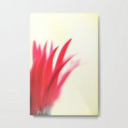 Gerbera Abstract  Metal Print