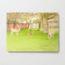 Deer Family Reunion Metal Print