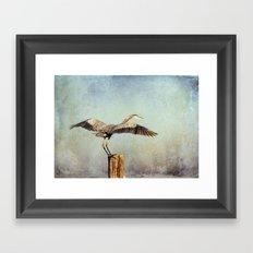 Blue Heron Landing Framed Art Print