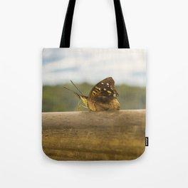 Butterfly against Blur Background at Iguazu Park Tote Bag