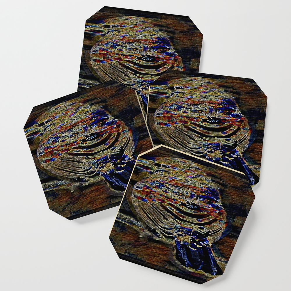 Bird Models: House Finch 01-02 Coasters by timereproofportraits (S6C11177023) photo