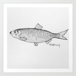 Herring Art Print