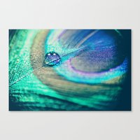 peacock Canvas Prints featuring Peacock by Marianne LoMonaco